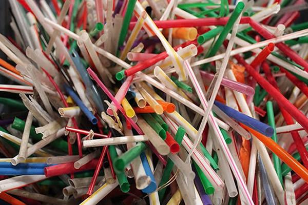 canudinhos plastico proibido starbucks